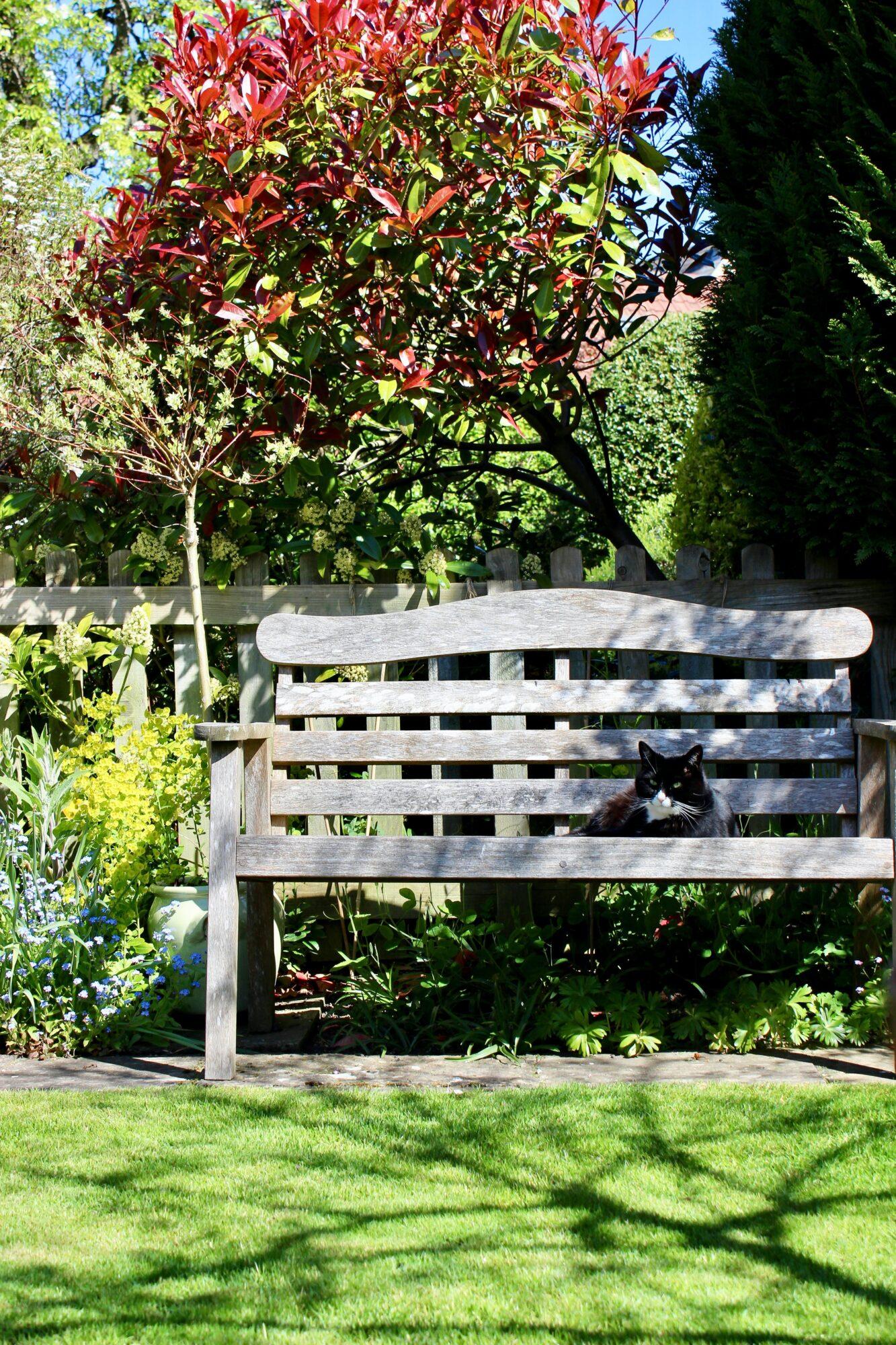 Havebænke – perfekt til de varme sommerdage