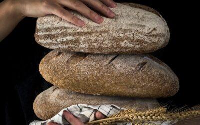 Bagning – hævekurve til brød